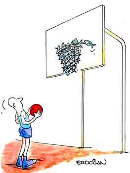 basket drole